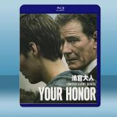 法官大人 Your Honor (2碟) (2020) ...