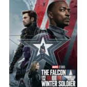 The Falcon and the Winter Soldier 獵鷹與冬兵 第1季 3DVD